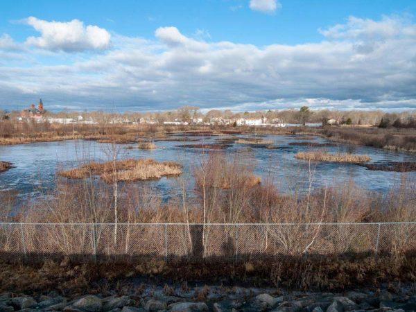 Wetlands behind a housing area